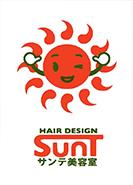 サンテ美容室-ロゴ